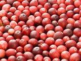 Terschellinger Cranberries_